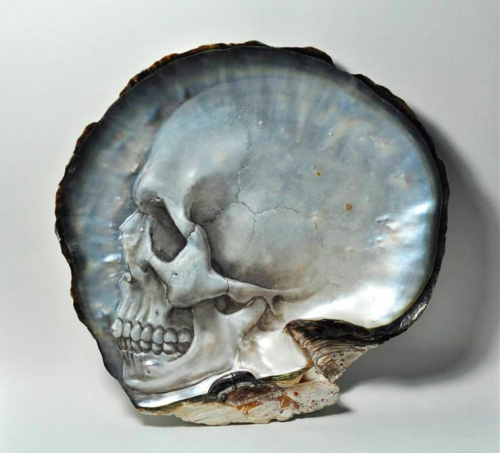Gregory Halili-seashells-skulls-6.jpg