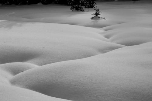 eric roseLake Louise, Alberta. Folds of Snow.jpg