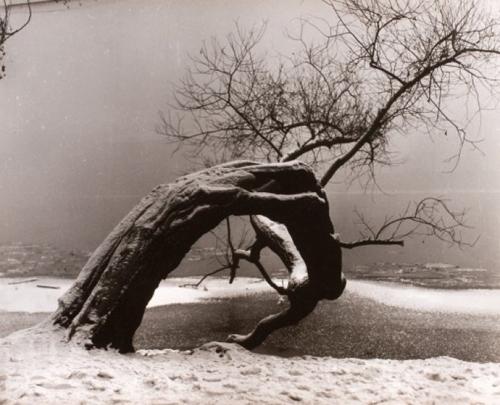 Jan Lauschmann, Bez názvu, 1934.jpg