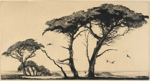 Mildred Bryant Brooks the pines of Monterey 1935.jpg
