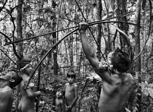 Sebastião Salgado les Awá Amazonie Brésil 3.jpg