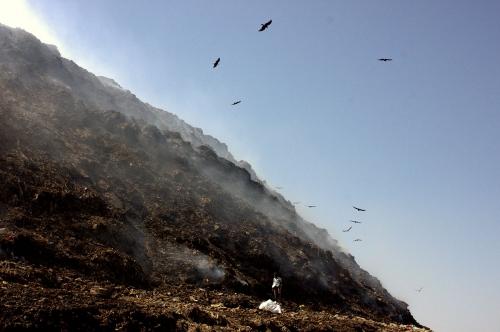 Williman Brown Bhalswa landfill site _8.jpg