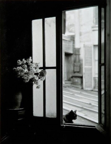Willy Ronis 3eb.jpg