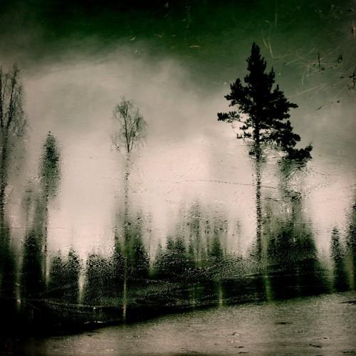 busangane  frozen_forest.jpg