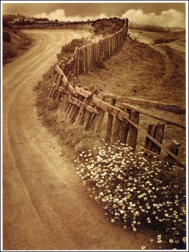 adolffassbender_daisytrail 1938.jpg
