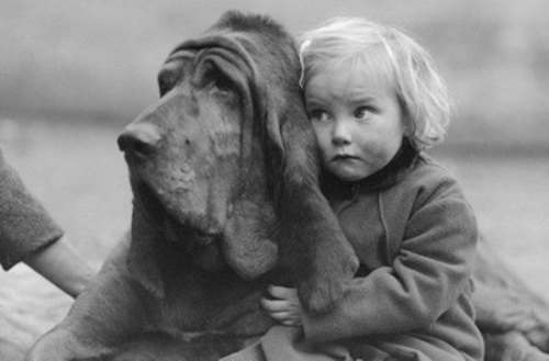 William Vanderson The love of a dog. 1935 .jpg