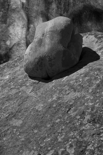 Alain Rivière Lecoeur chair de pierre 1+BD.jpg