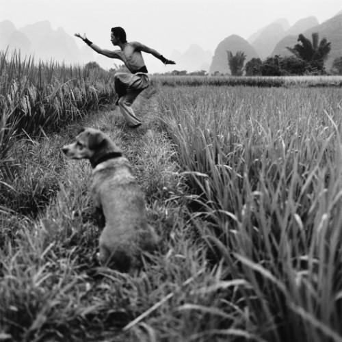 monica denevan Tandem-China-2012525x525.jpg