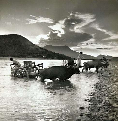 Fritz Henle - Tehuantepec, Mexico 1960's.jpg