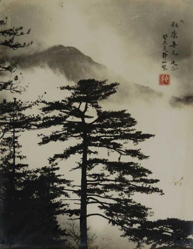 Lang Ching-shan _ Cloudland.jpg