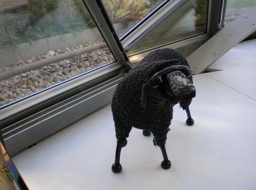 Jean-Luc Cornec Phone-Sheep-4.jpg