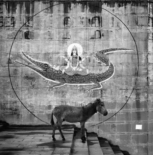 Pentti Sammallahti Vanarasi Inde 1999.jpg