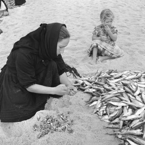 artur pastor Amanhando o peixe - entre 1956 e 1957 - Nazaré -.png