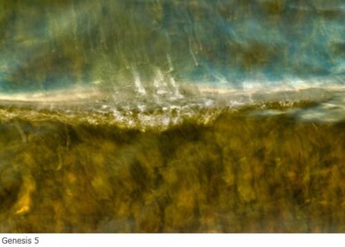 douglas ethridge genesis 5.jpg