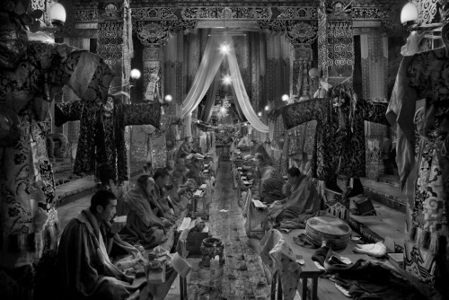 larrie louie tibet.jpg