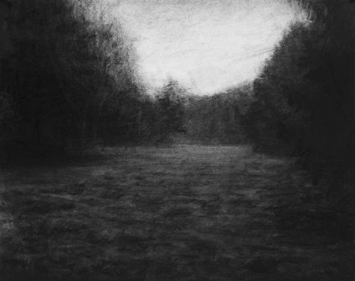 renie spoelstra _Pine_forest,_2012,_40x50cm_lg.jpg