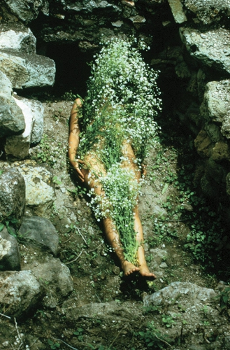 Ana Mendieta Flowers on Body 1973.jpg
