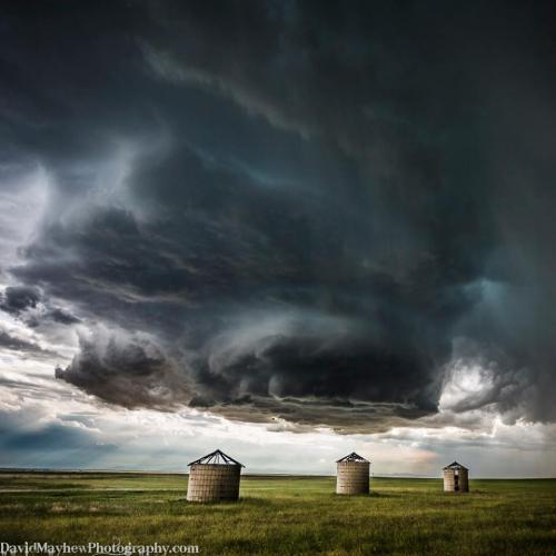 David Mayhew Photographyn.jpg