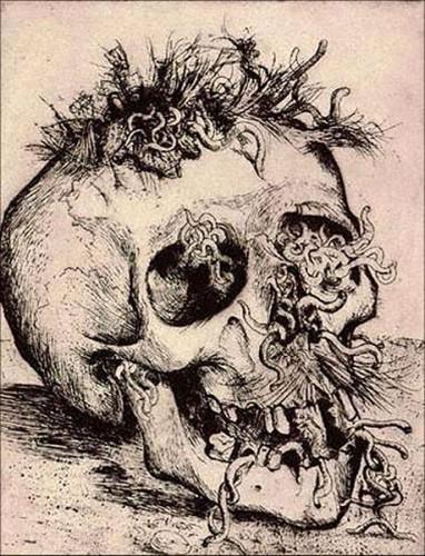 otto dix skull 1924.jpg