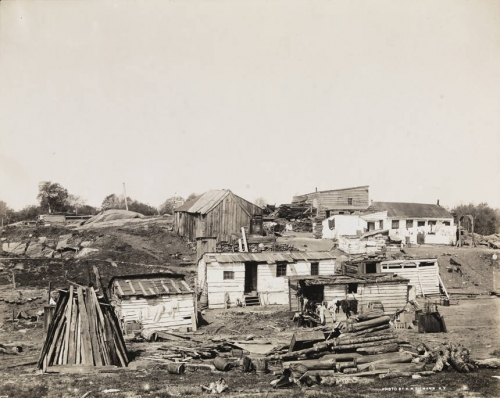 Squatters' shacks on Fifth Avenue and 101st Street. 1894..jpg