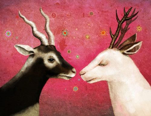 dani soon Deers 2012.jpg