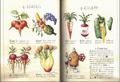 Codex-Seraphinianus111.jpg