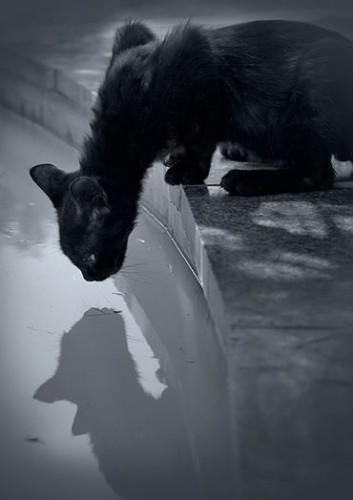 Andrey Repin 9_n.jpg