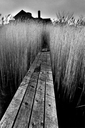 Jeanloup Sieff, La maison noire, East Hampton, New York, 1964.jpg