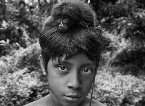 Sebastião Salgado les Awá Amazonie Brésil 5.jpg