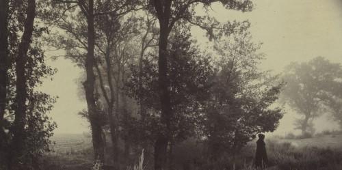Félix Thiollier Paysage avec figure, Forez, Loire, circa 1880-1882.jpg