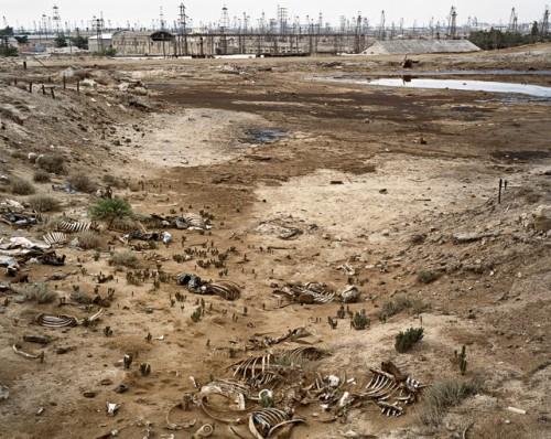 edward burtynsky SOCAR Oil Fields #10Baku, Azerbaijan, 2006.jpg