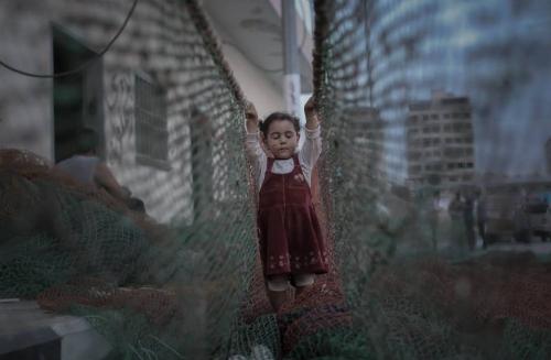 Ezz Al Zanoon  Gaza, Palestine 12 November 2016_n.jpg