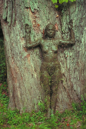 ANA-MENDIETA_Tree-of-Life.jpg