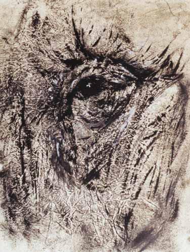 Anne Marie Vesco étude oeil d'éléphant huile sur papier - 2003 - 32x22 cm .jpg