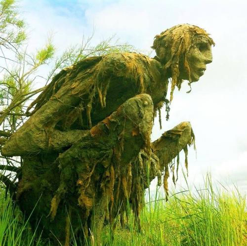 Sophie Prestigiacomo Homo algus marais de Séné_Morbihann.jpg