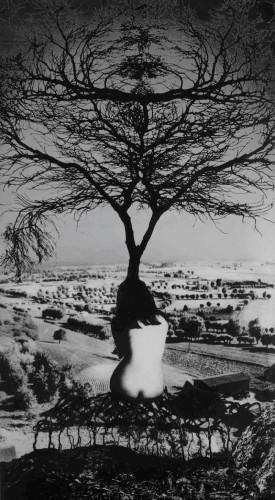 Jerzy Wardak .jpg