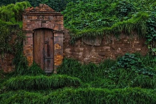 GUSTAVO TEN HOEVER Casa Verde , 2014.jpeg