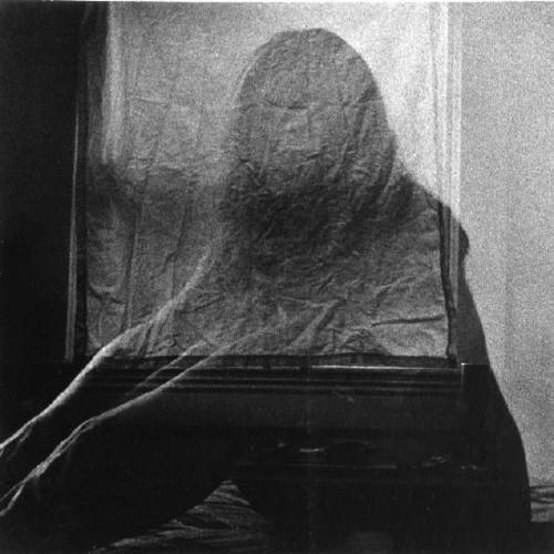 Charles Swedlund la femme iréelle.jpg