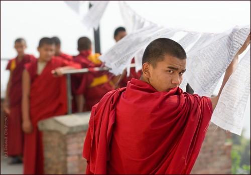dima chatrov népal katmandu 0.jpg