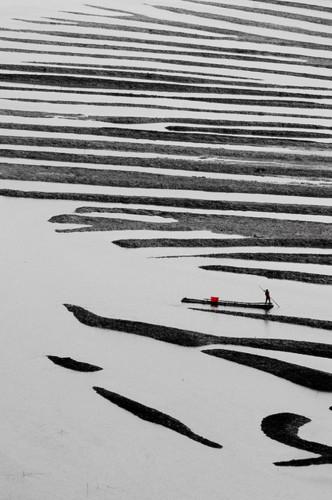 Xianyi Shen-2011.jpg