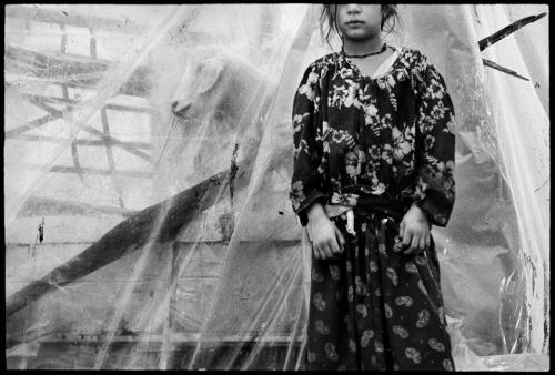 Nikos Economopoulos GREECE. Thessaly. Shantytown of Lamia. Gypsies. 1994..jpg