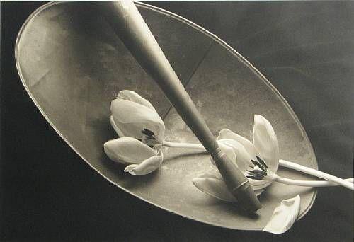 Kenro Izu 1987.jpg