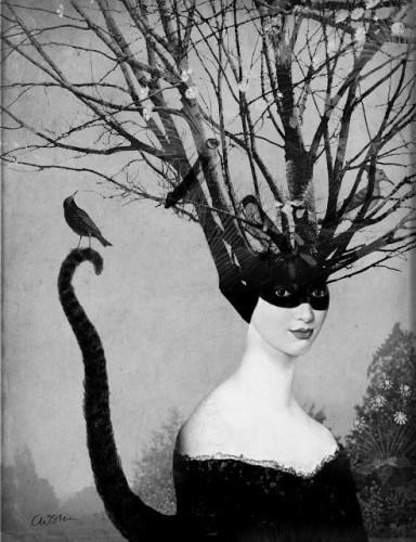 Catrin Welz-Stein n.jpg